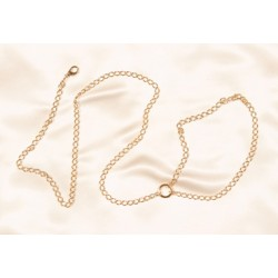 Jewelry Chain Leash in Silver or Gold