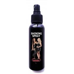 Latex Shine Spray