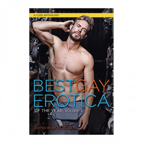 Best Gay Erotica of the Year Vol 3