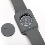Companion Wearable Remote Controlled Vibrator