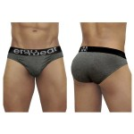EW1029 FEEL Modal Briefs Color Gray