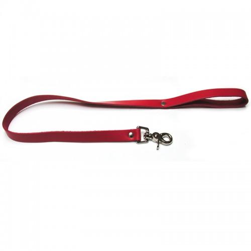 Bondage Basics Leather Red Leash