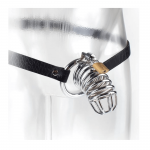 Extreme Chastity Belt
