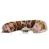 Pink Snow Leopard - FT04